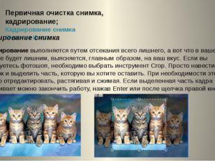 Первичная очистка снимка, кадрирование; Кадрирование снимка Очистка фото 2 Ка