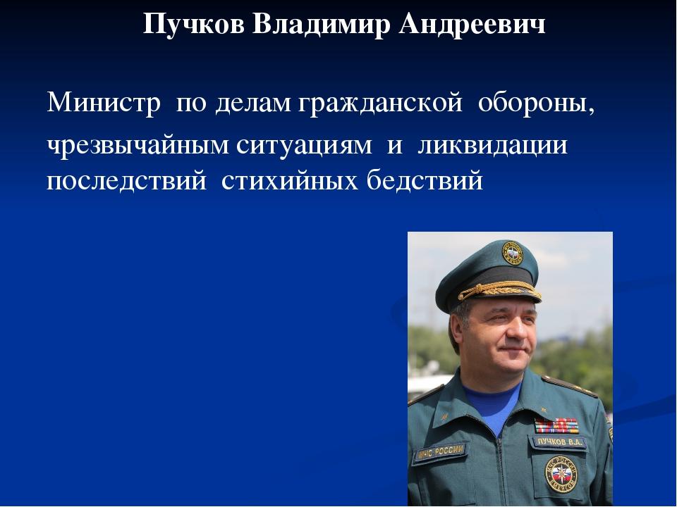 Пучков Владимир Андреевич Министр по делам гражданской обороны, чрезвычайным...