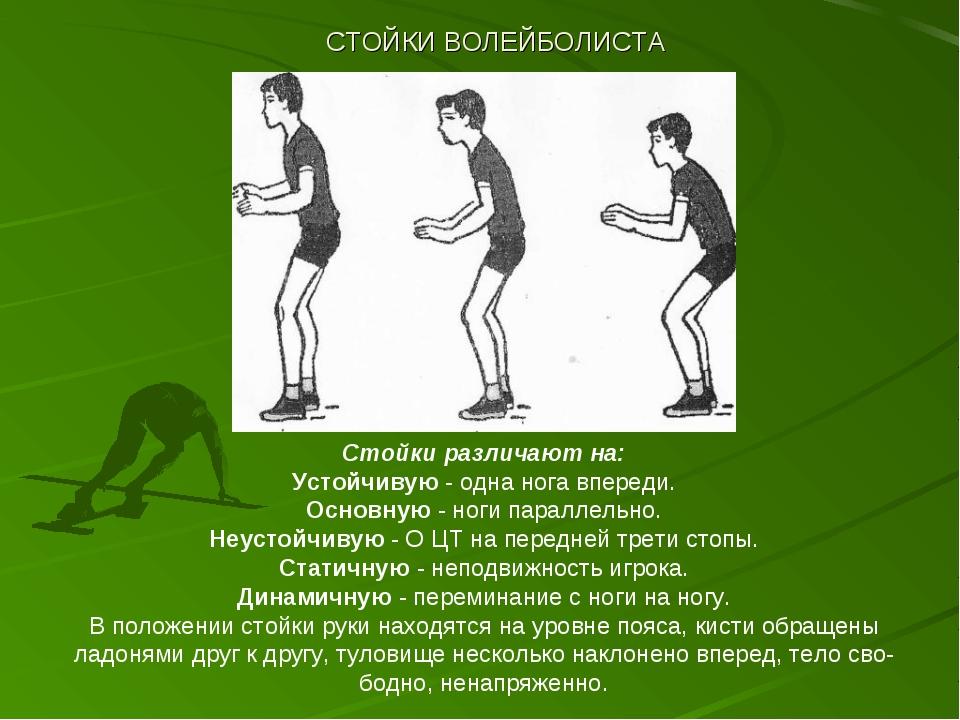 СТОЙКИ ВОЛЕЙБОЛИСТА Стойки различают на: Устойчивую - одна нога впереди. Осно...