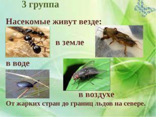 Насекомые живут везде: в почве в земле в воде в воздухе От жарких стран до г