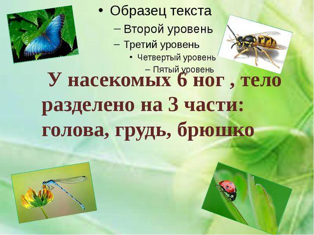 У насекомых 6 ног , тело разделено на 3 части: голова, грудь, брюшко