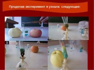 Проделав эксперимент я узнала следующее: