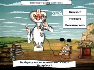 Вопросы от доктора Айболита На берегу какого залива стоит Санкт-Петербург? Фи