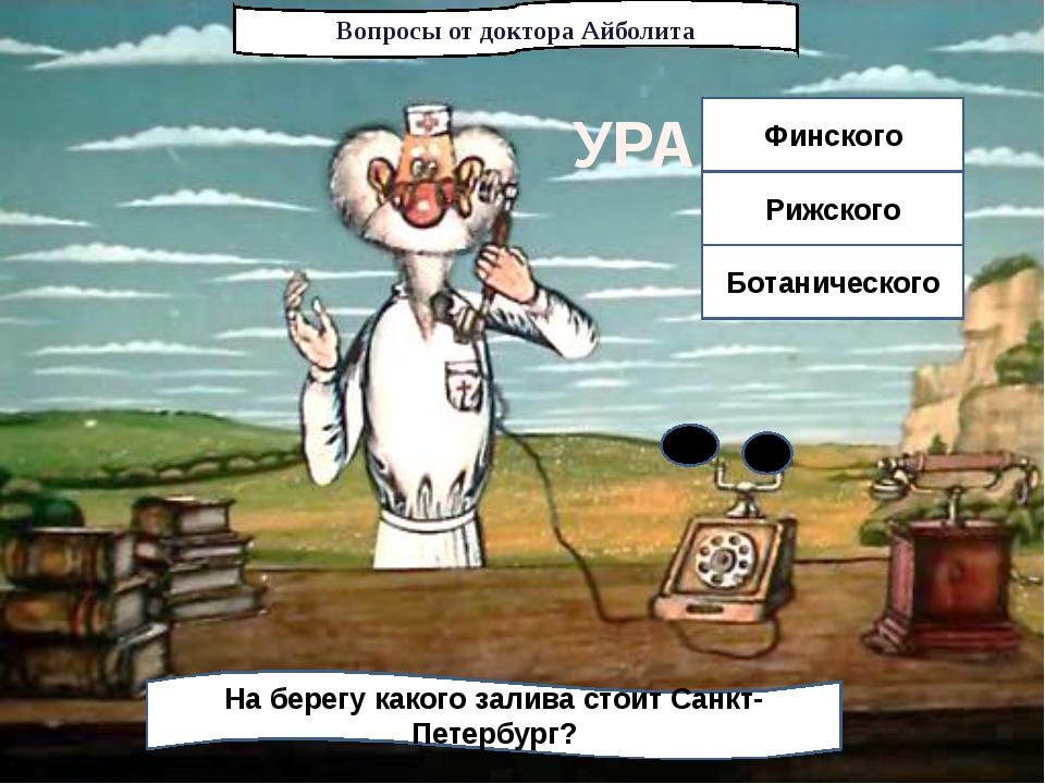 Вопросы от доктора Айболита На берегу какого залива стоит Санкт-Петербург? Фи...