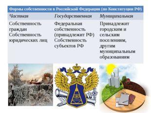 Формы собственности в Российской Федерации (по Конституции РФ) Частная Госуда