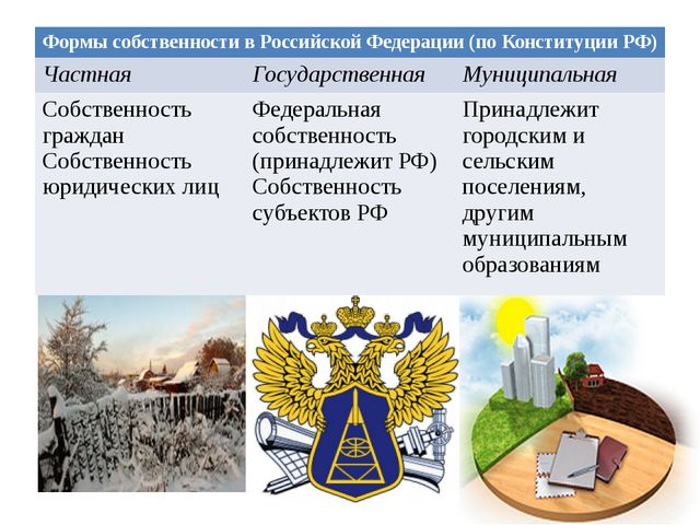 Формы собственности в Российской Федерации (по Конституции РФ) Частная Госуда...