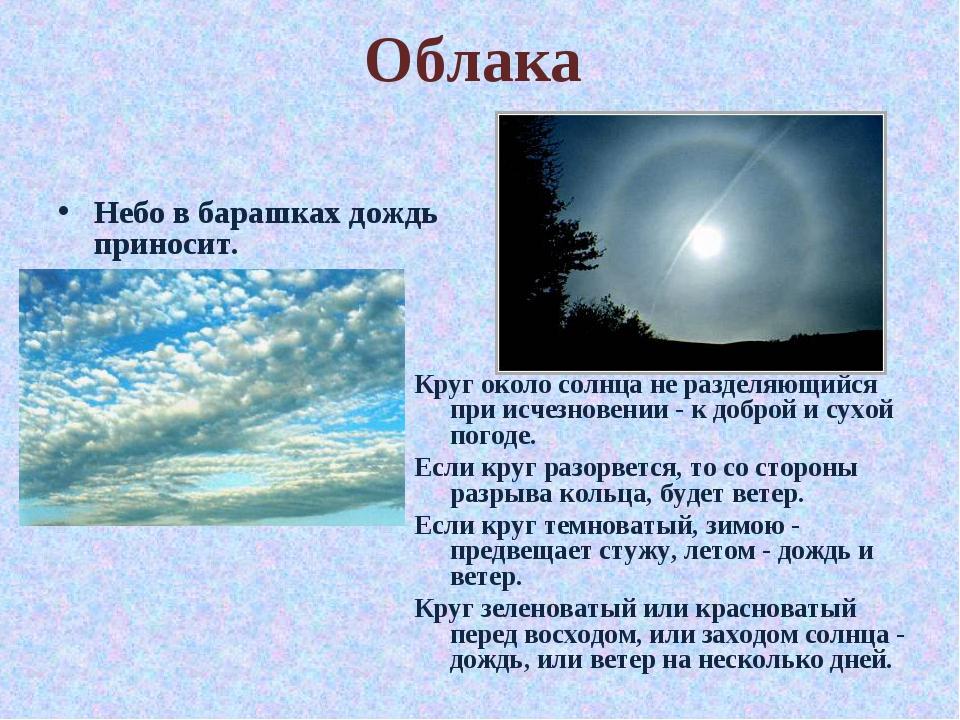 Облака Небо в барашках дождь приносит. Круг около солнца не разделяющийся при...