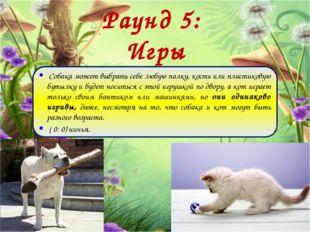 Раунд 5: Игры Собака может выбрать себе любую палку, кость или пластиковую бу