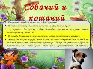 Собачий и кошачий диалект Понимают ли собаки и кошки человеческую речь? По мн