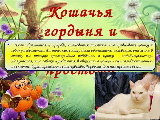 Кошачья гордыня и собачья простота Если обратиться к природе, становится поня...