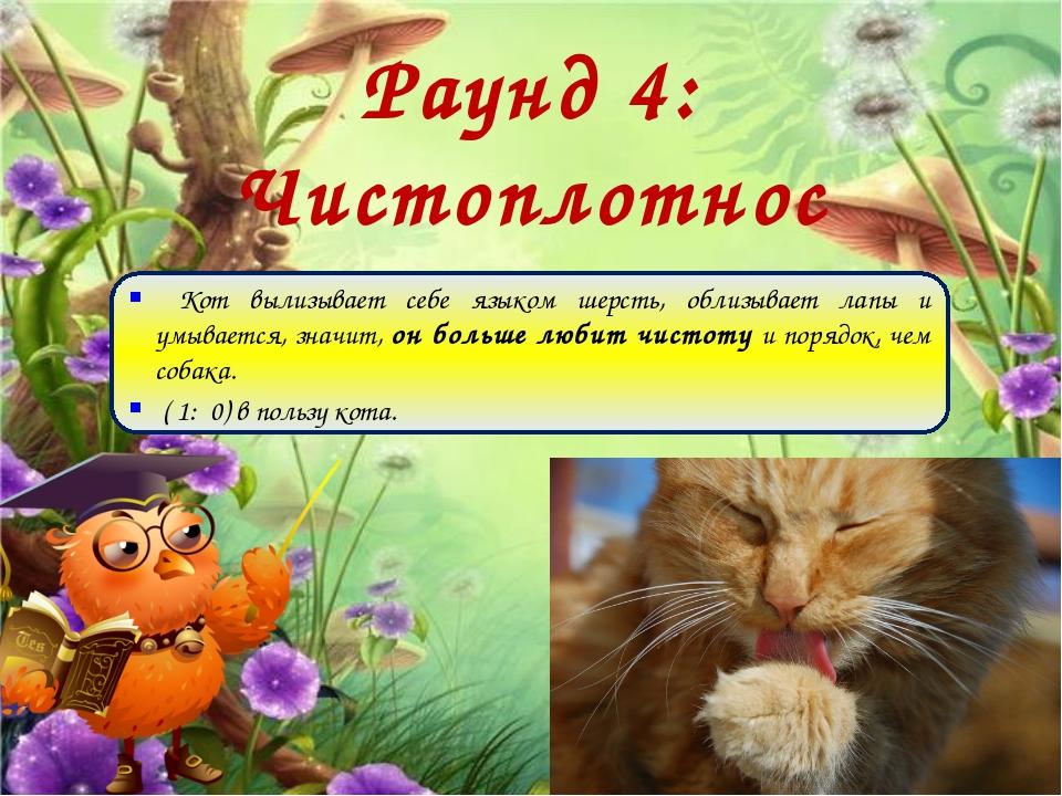 Раунд 4: Чистоплотность Кот вылизывает себе языком шерсть, облизывает лапы и...