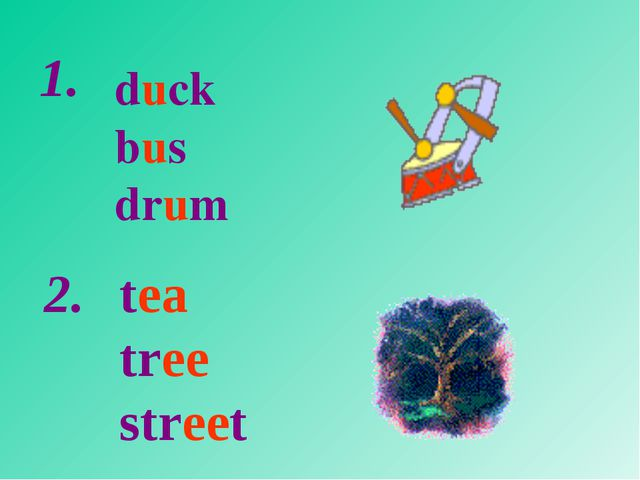 duck bus drum tea tree street 1. 2.