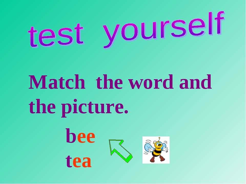 Match the word and the picture. bee tea