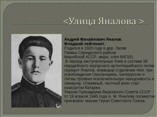 Андрей Михайлович Яналов. Младший лейтенант. Родился в 1920 году в дер. Лапка