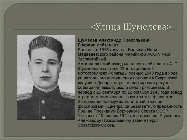 Шумелев Александр Прокопьевич. Гвардии лейтенант. Родился в 1913 году в д. Бо...