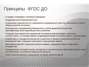 Принципы ФГОС ДО Стандарт утверждает основные принципы: Поддержки разнообрази