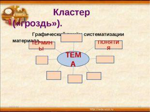 * * Кластер («гроздь»). Графический приём систематизации материала. ТЕМА ТЕРМ