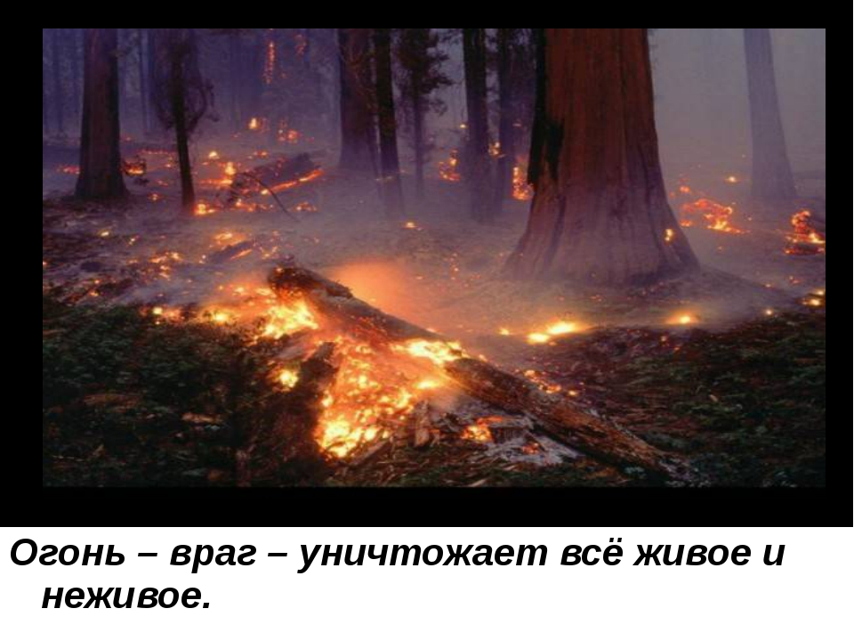 Огонь – враг – уничтожает всё живое и неживое.