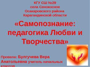 КГУ СШ №29 села Сенокосное Осакаровского района Карагандинской области «Самоп