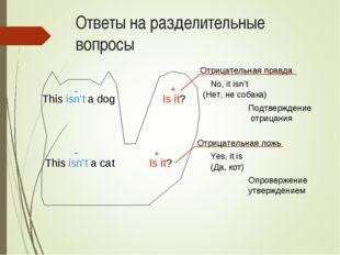 Ответы на разделительные вопросы This isn't a dog Is it? This isn't a cat Is