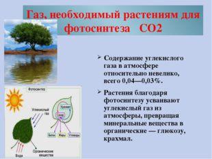 Газ, необходимый растениям для фотосинтеза CO2 Содержание углекислого газа в