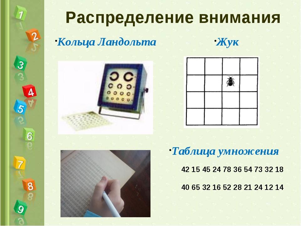Распределение внимания Кольца Ландольта Таблица умножения Жук 42 15 45 24 78...