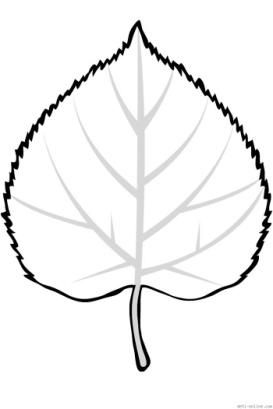Раскраска Липовый листок