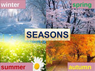 winter spring autumn summer