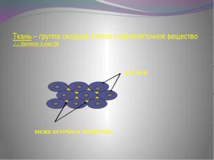 Ткань – группа сходных клеток и межклеточное вещество ..\..\..\Биология. 5 к