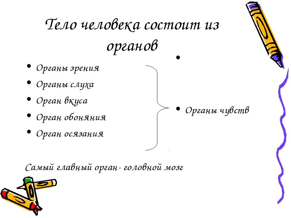 Тело человека состоит из органов Органы зрения Органы слуха Орган вкуса Орган...