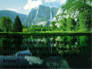 Do you like animals? What animals do you know? What wild animals do you know?
