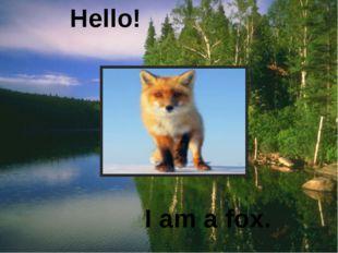 Hello! I am a fox.