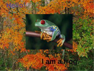 Hello! I am a frog.