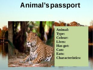 Animal's passport Animal: Type: Colour: Lives: Has got: Can: Eats: Characteri