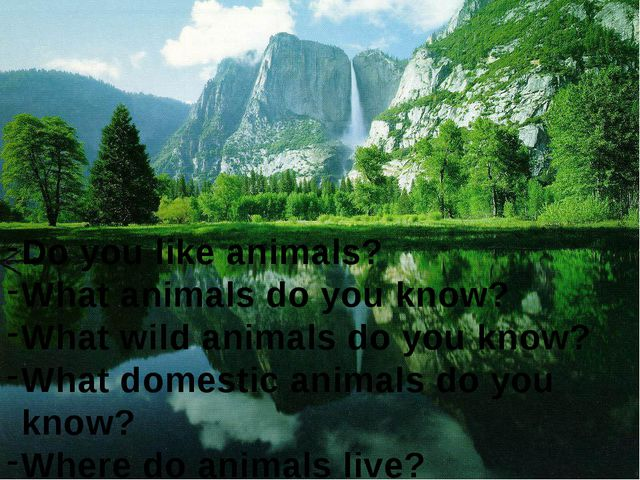 Do you like animals? What animals do you know? What wild animals do you know?...