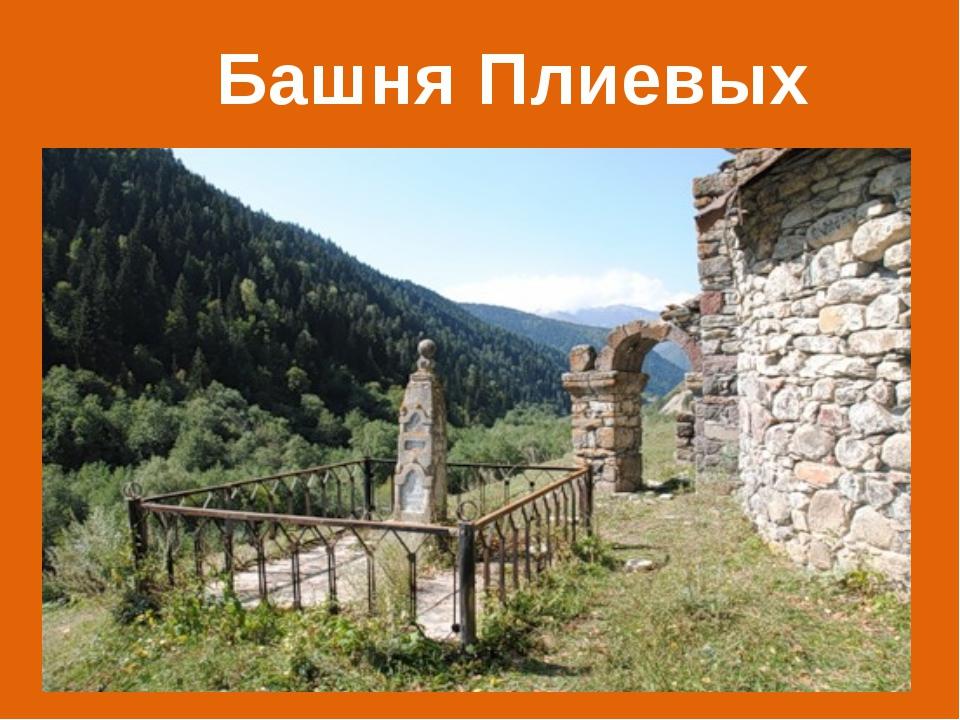Башня Плиевых