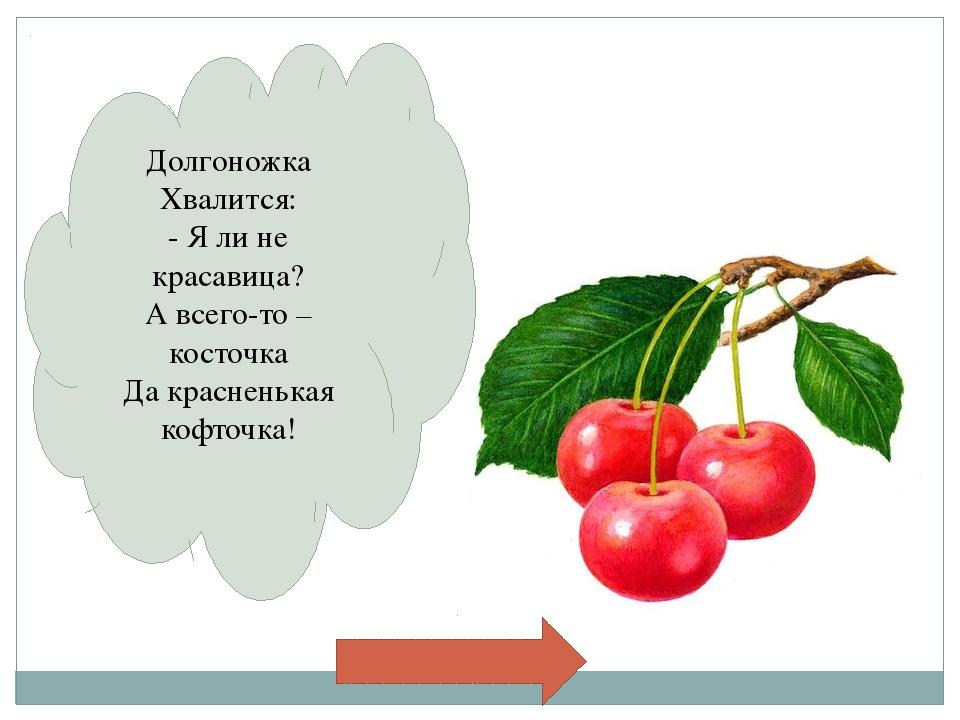 План работы 1. Определиться с выбором фруктов. 2. Обвести на картоне шаблон....
