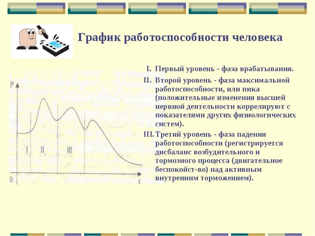 График работоспособности человека I.Первый уровень - фаза врабатывания. II....