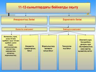 11-12-сыныптардағы бейіналды оқыту Инварианттық бөлімі Вариативтік бөлімі Ба