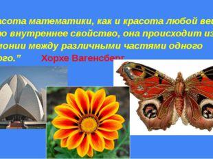 """""""Красота математики, как и красота любой вещи, – это внутреннее свойство, он"""