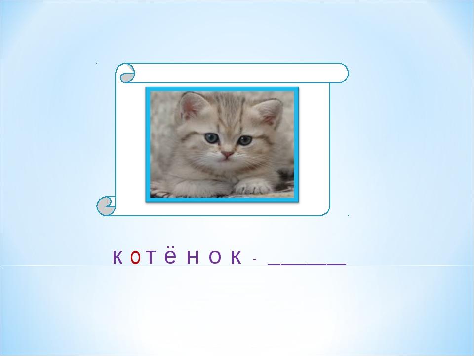 Детёныш кошки к т о - ____________ ё н о к