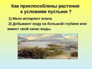Как приспособлены растения к условиям пустыни ? 1) Мало испаряют влаги. 2) До