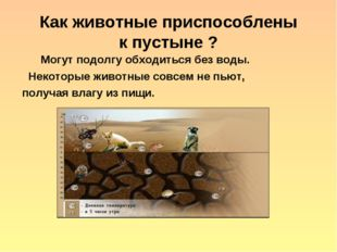 Как животные приспособлены к пустыне ? Могут подолгу обходиться без воды. Нек