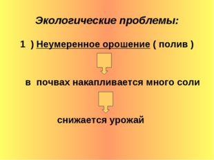 Экологические проблемы: 1 ) Неумеренное орошение ( полив ) в почвах накаплива