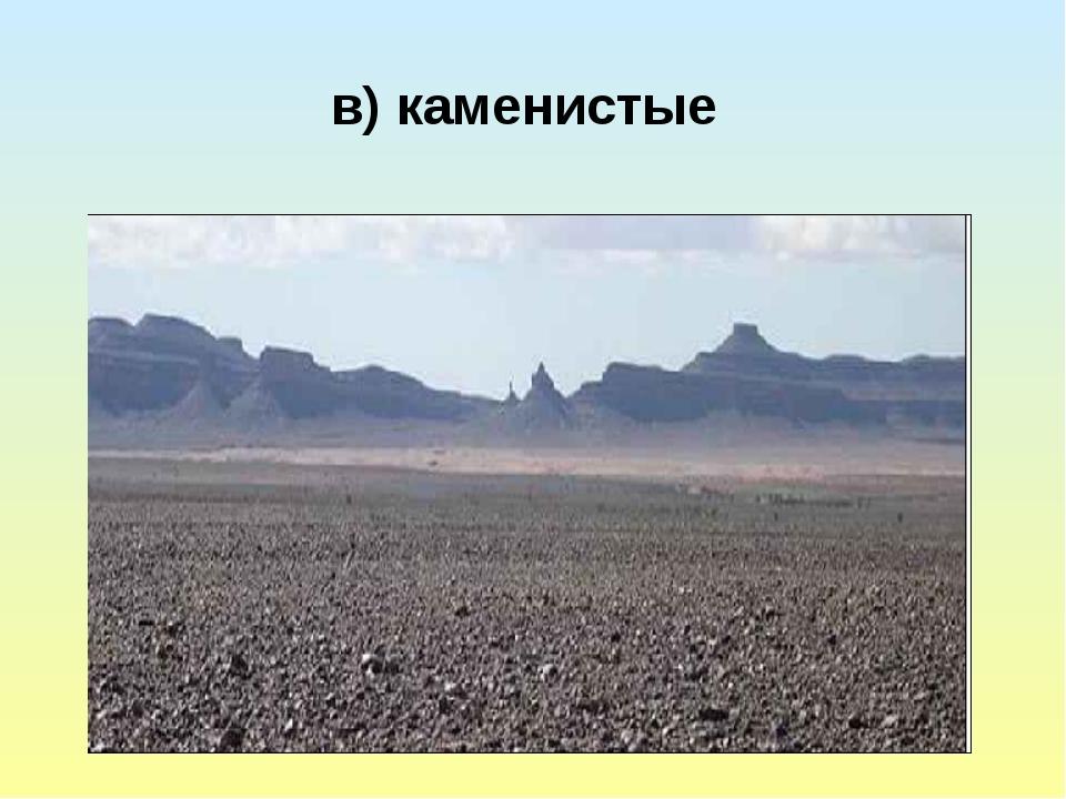 в) каменистые