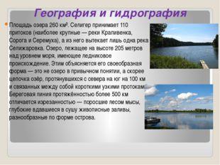 География и гидрография Площадь озера 260 км². Селигер принимает 110 притоков
