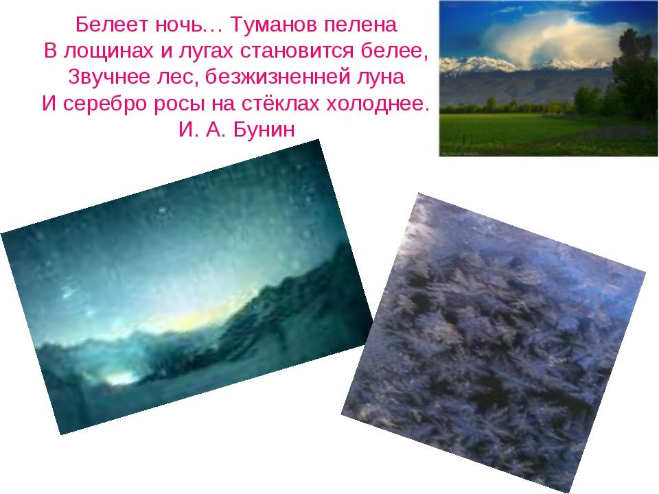 Белеет ночь… Туманов пелена В лощинах и лугах становится белее, Звучнее лес,...