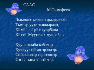 СААС М.Тимофеев Чыычаах ыллаан дьырылаан Тымыр уута тыккыраан, Көмүөл өрүс с