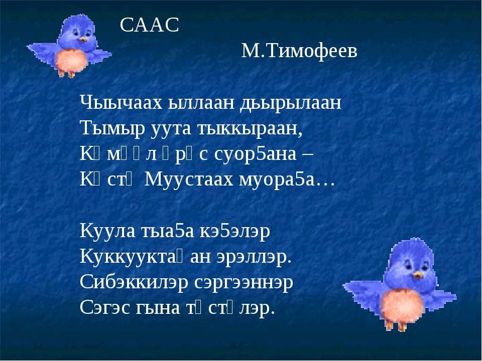 СААС М.Тимофеев Чыычаах ыллаан дьырылаан Тымыр уута тыккыраан, Көмүөл өрүс с...