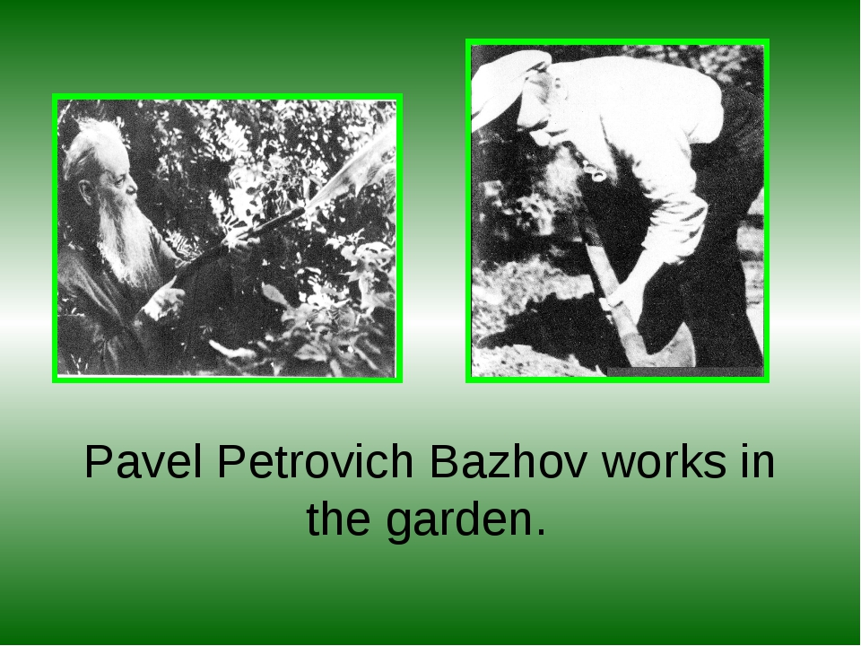 Pavel Petrovich Bazhov works in the garden.